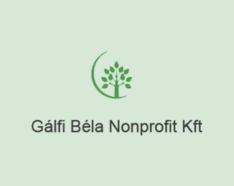 Galfi-Bela-Nonprofit-kft